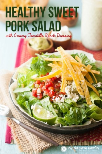 Healthy-Pulled-Pork-Salad-1-677x1024